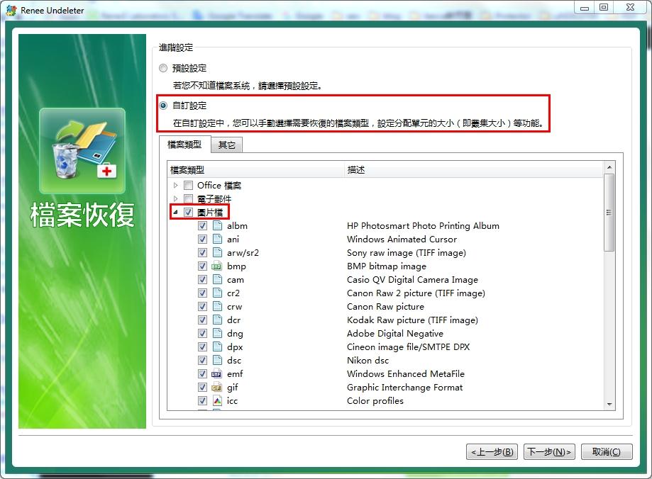 掃描檔案類型進階選項